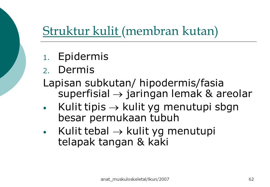 anat_muskuloskeletal/ikun/200762 Struktur kulit Struktur kulit (membran kutan) 1. Epidermis 2. Dermis Lapisan subkutan/ hipodermis/fasia superfisial 