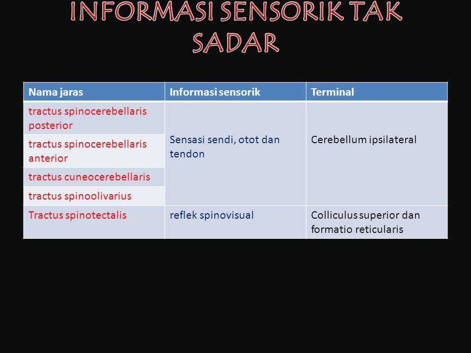 Nama jarasInformasi sensorikTerminal tractus spinocerebellaris posterior Sensasi sendi, otot dan tendon Cerebellum ipsilateral tractus spinocerebellar