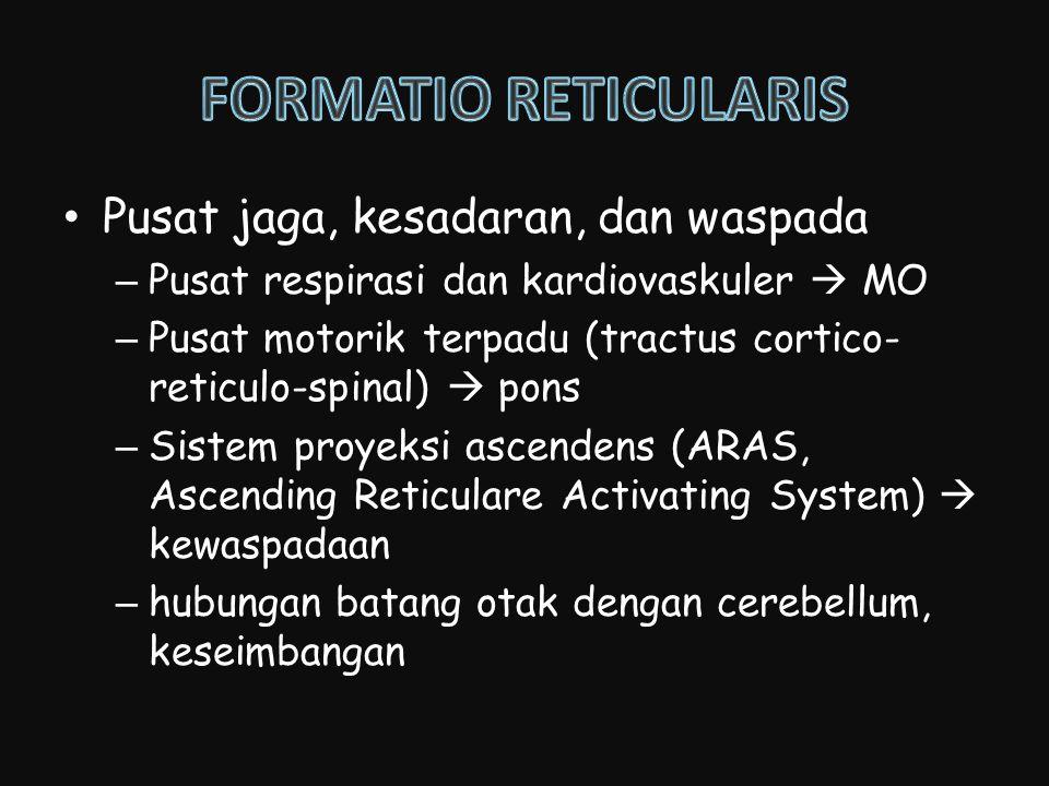 Pusat jaga, kesadaran, dan waspada –Pusat respirasi dan kardiovaskuler  MO –Pusat motorik terpadu (tractus cortico- reticulo-spinal)  pons –Sistem p