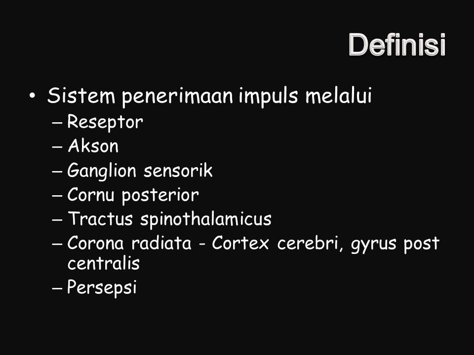 Sistem penerimaan impuls melalui –Reseptor –Akson –Ganglion sensorik –Cornu posterior –Tractus spinothalamicus –Corona radiata - Cortex cerebri, gyrus