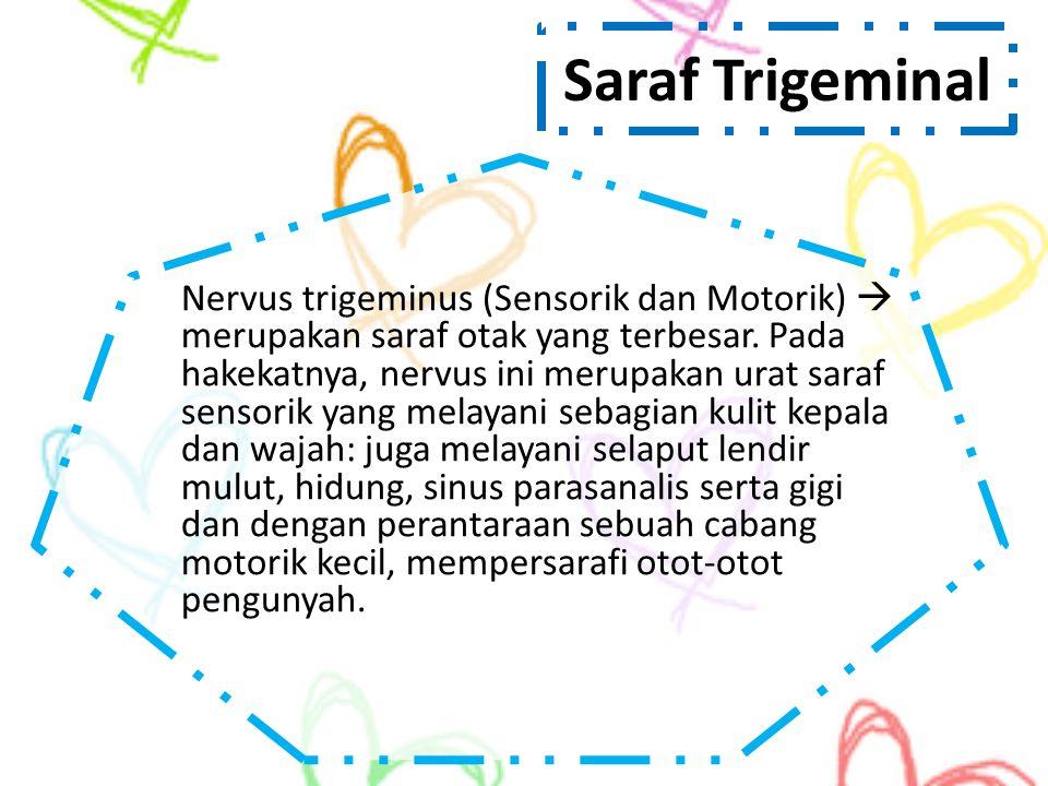 Saraf Trigeminal Nervus trigeminus (Sensorik dan Motorik)  merupakan saraf otak yang terbesar. Pada hakekatnya, nervus ini merupakan urat saraf senso
