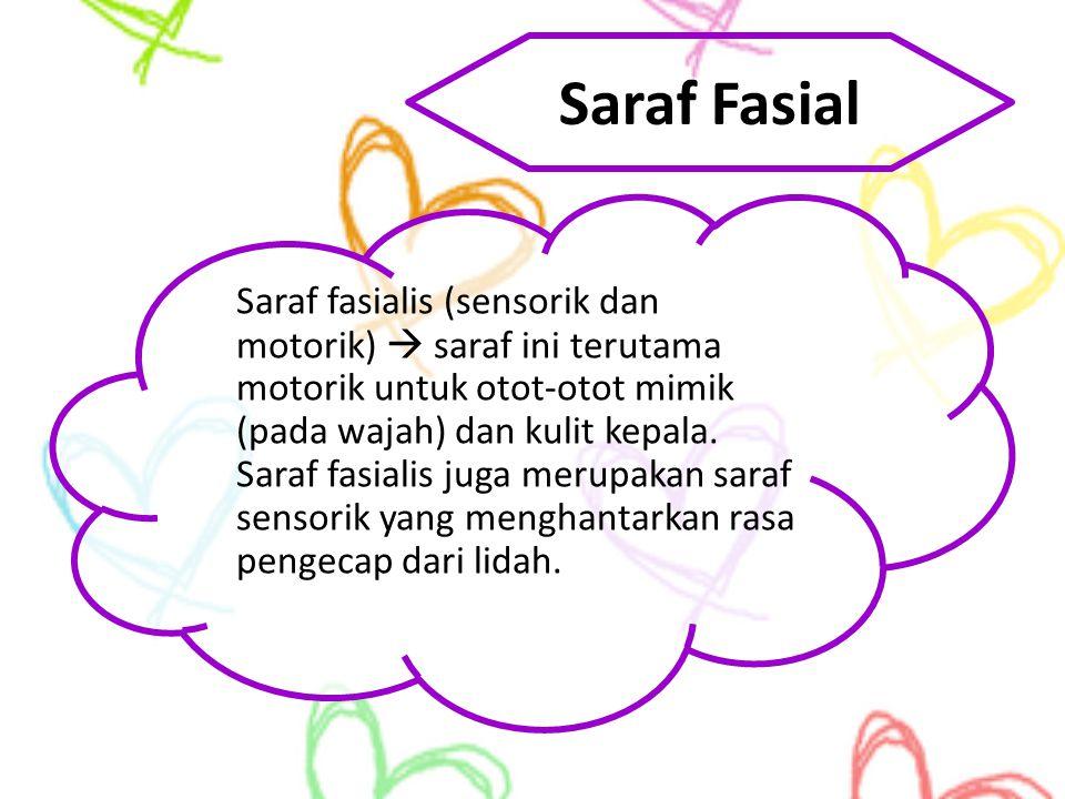 Saraf Fasial Saraf fasialis (sensorik dan motorik)  saraf ini terutama motorik untuk otot-otot mimik (pada wajah) dan kulit kepala. Saraf fasialis ju