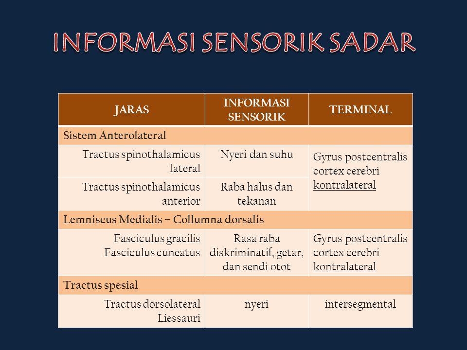 JARAS INFORMASI SENSORIK TERMINAL Sistem Anterolateral Tractus spinothalamicus lateral Nyeri dan suhu Gyrus postcentralis cortex cerebri kontralateral