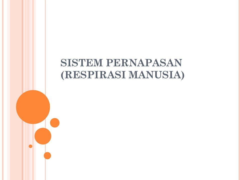 SISTEM PERNAPASAN (RESPIRASI MANUSIA)