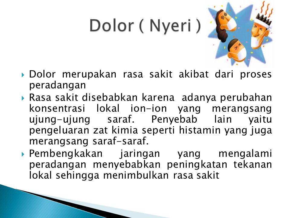  Dolor merupakan rasa sakit akibat dari proses peradangan  Rasa sakit disebabkan karena adanya perubahan konsentrasi lokal ion-ion yang merangsang ujung-ujung saraf.