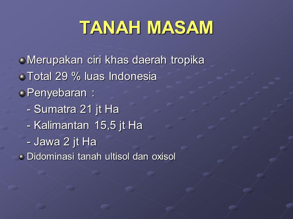 TANAH MASAM Merupakan ciri khas daerah tropika Total 29 % luas Indonesia Penyebaran : - Sumatra 21 jt Ha - Kalimantan 15,5 jt Ha - Jawa 2 jt Ha Didominasi tanah ultisol dan oxisol