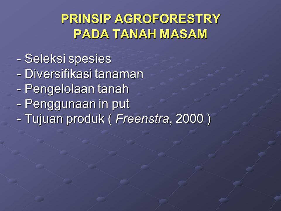 PRINSIP AGROFORESTRY PADA TANAH MASAM - Seleksi spesies - Diversifikasi tanaman - Pengelolaan tanah - Penggunaan in put - Tujuan produk ( Freenstra, 2000 )
