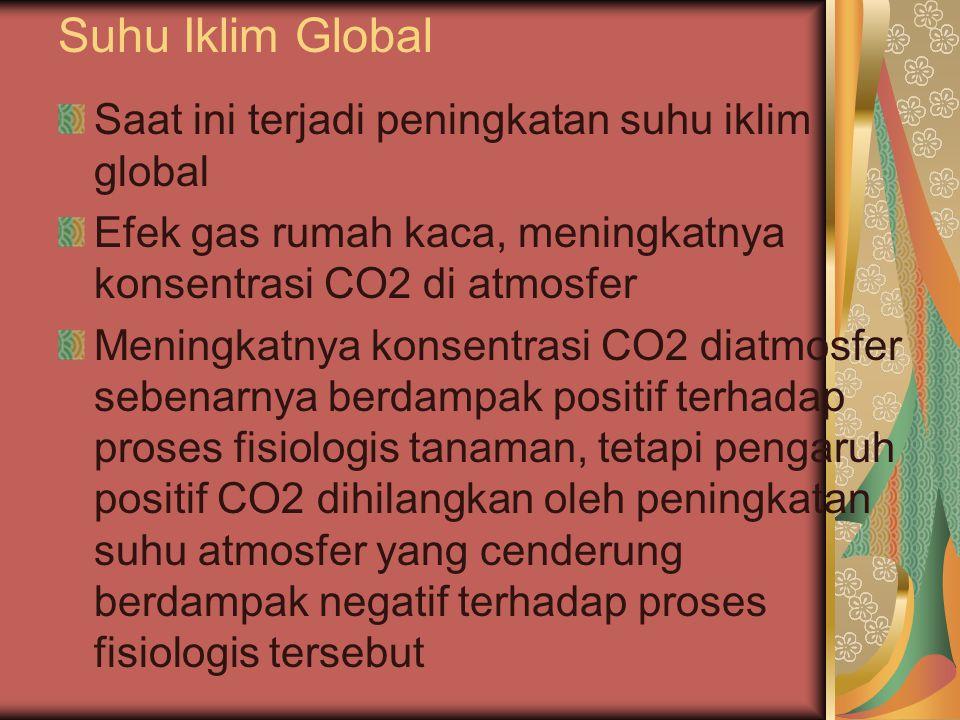 Suhu Iklim Global Saat ini terjadi peningkatan suhu iklim global Efek gas rumah kaca, meningkatnya konsentrasi CO2 di atmosfer Meningkatnya konsentrasi CO2 diatmosfer sebenarnya berdampak positif terhadap proses fisiologis tanaman, tetapi pengaruh positif CO2 dihilangkan oleh peningkatan suhu atmosfer yang cenderung berdampak negatif terhadap proses fisiologis tersebut