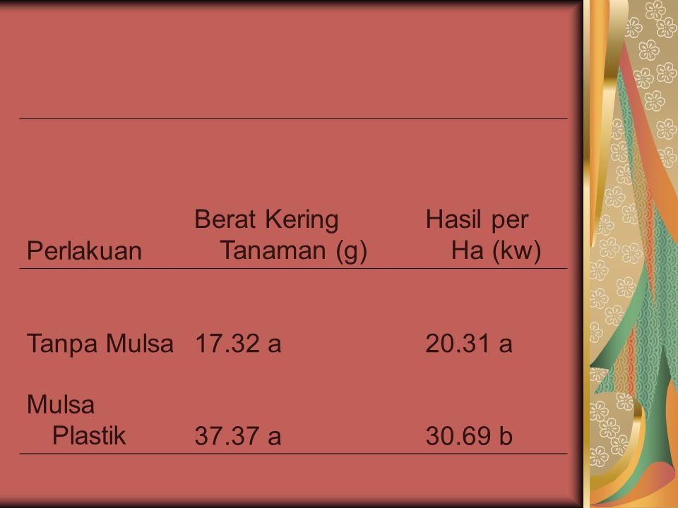 Perlakuan Berat Kering Tanaman (g) Hasil per Ha (kw) Tanpa Mulsa17.32 a20.31 a Mulsa Plastik37.37 a30.69 b