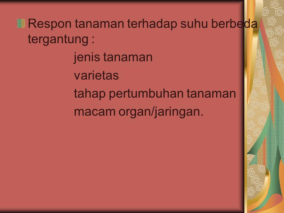 Respon tanaman terhadap suhu berbeda tergantung : jenis tanaman varietas tahap pertumbuhan tanaman macam organ/jaringan.