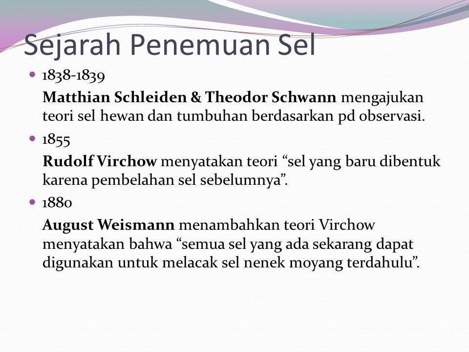 1838-1839 Matthian Schleiden & Theodor Schwann mengajukan teori sel hewan dan tumbuhan berdasarkan pd observasi. 1855 Rudolf Virchow menyatakan teori