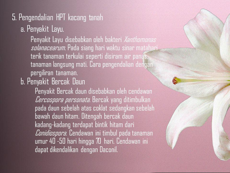 5.Pengendalian HPT kacang tanah a. Penyakit Layu.