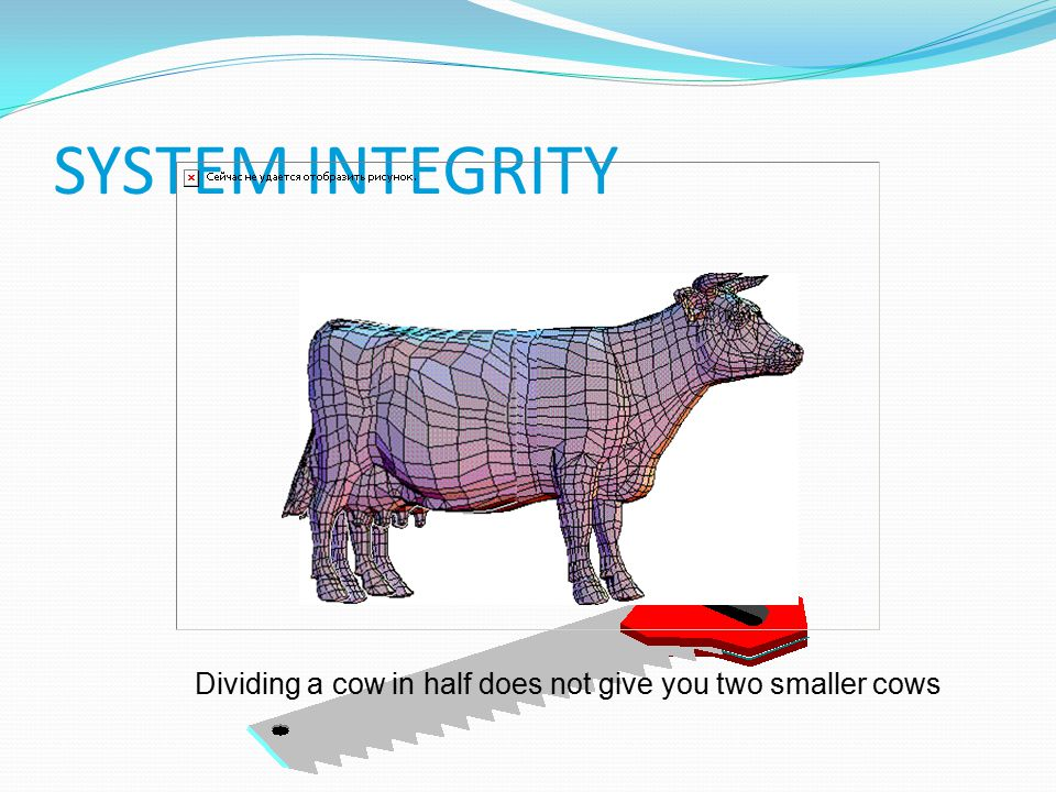 SYSTEM INTEGRITY Dividing a cow in half does not give you two smaller cows