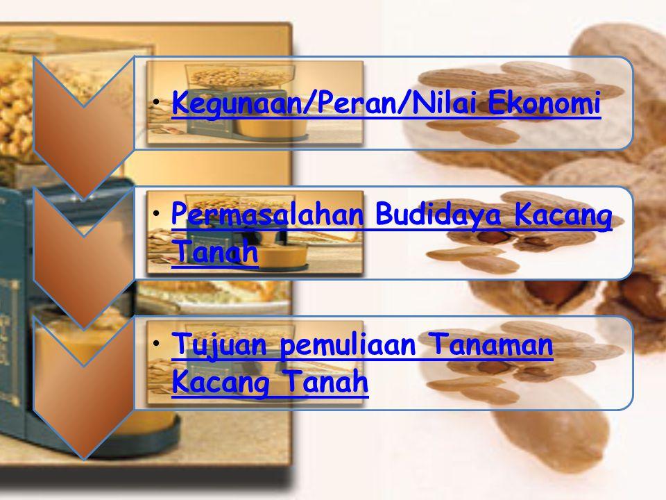Kegunaan/Peran/Nilai Ekonomi Permasalahan Budidaya Kacang TanahPermasalahan Budidaya Kacang Tanah Tujuan pemuliaan Tanaman Kacang TanahTujuan pemuliaan Tanaman Kacang Tanah