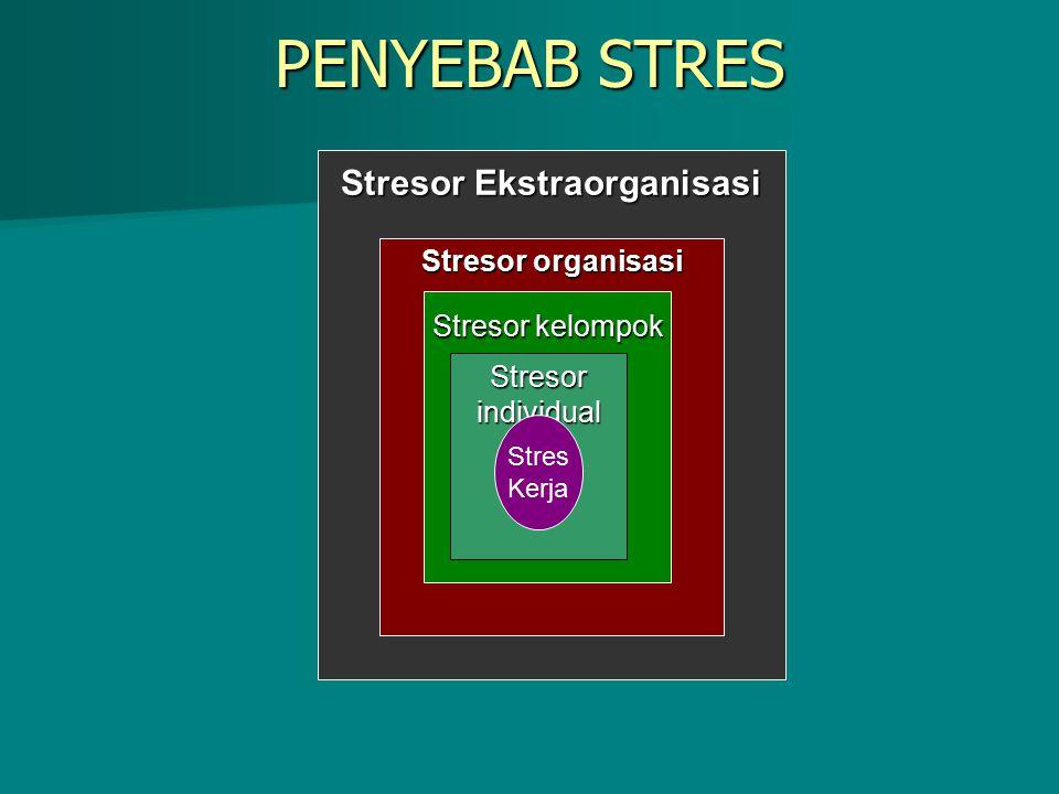 Stresor Ekstraorganisasi Stresor organisasi Stresor kelompok Stresor individual PENYEBAB STRES Stres Kerja