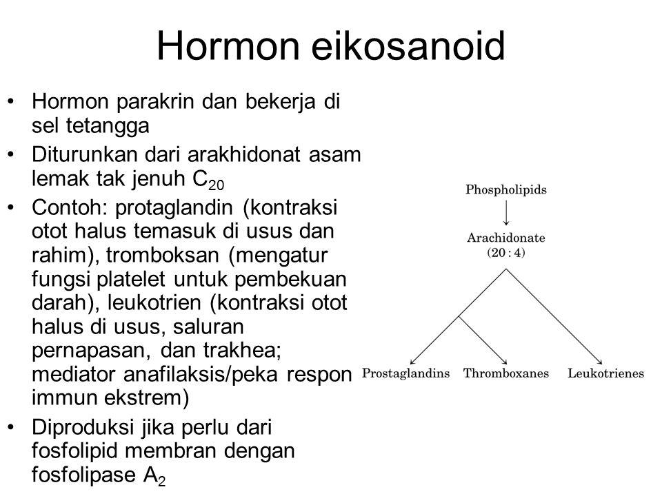 Hormon eikosanoid Hormon parakrin dan bekerja di sel tetangga Diturunkan dari arakhidonat asam lemak tak jenuh C 20 Contoh: protaglandin (kontraksi ot