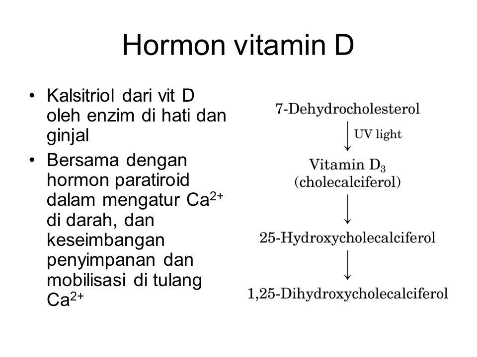 Hormon vitamin D Kalsitriol dari vit D oleh enzim di hati dan ginjal Bersama dengan hormon paratiroid dalam mengatur Ca 2+ di darah, dan keseimbangan