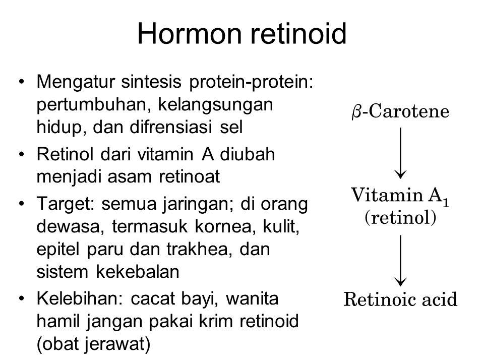 Hormon retinoid Mengatur sintesis protein-protein: pertumbuhan, kelangsungan hidup, dan difrensiasi sel Retinol dari vitamin A diubah menjadi asam ret