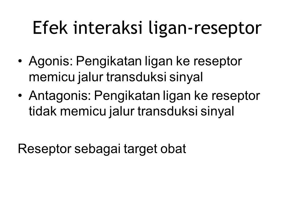 Efek interaksi ligan-reseptor Agonis: Pengikatan ligan ke reseptor memicu jalur transduksi sinyal Antagonis: Pengikatan ligan ke reseptor tidak memicu