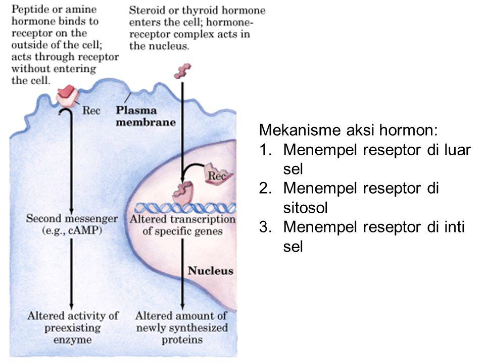 Klasifikasi berdasarkan pelepasan Hormon endokrin: dilepas ke darah dan dibawa ke sel target seluruh tubuh, mis.