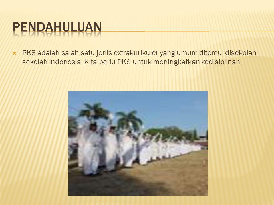  PKS adalah salah satu jenis extrakurikuler yang umum ditemui disekolah sekolah indonesia. Kita perlu PKS untuk meningkatkan kedisiplinan.