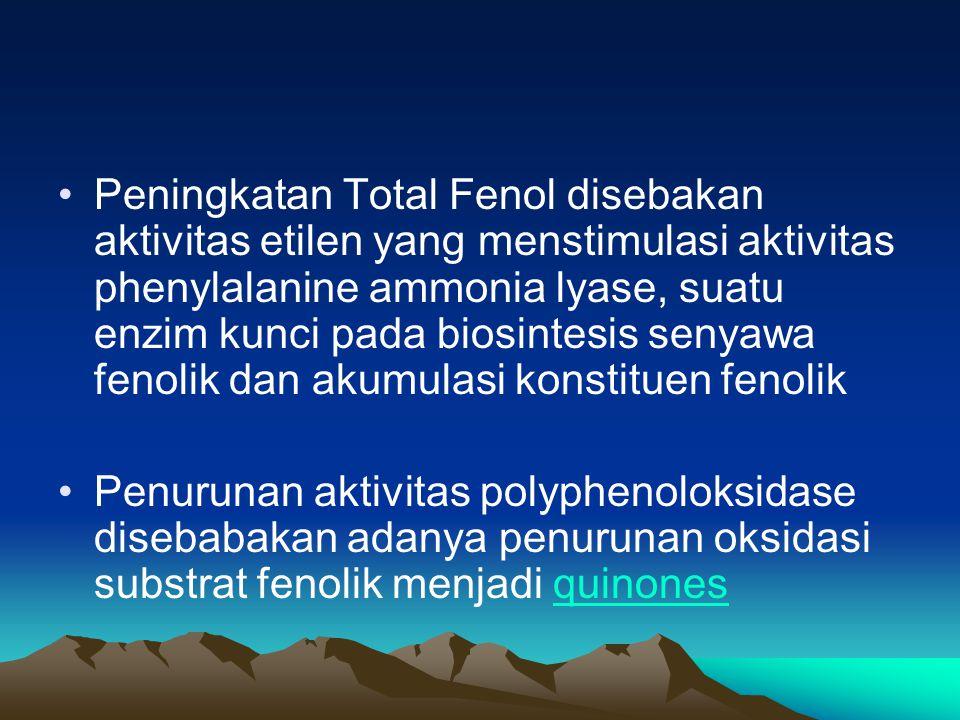 Peningkatan Total Fenol disebakan aktivitas etilen yang menstimulasi aktivitas phenylalanine ammonia lyase, suatu enzim kunci pada biosintesis senyawa fenolik dan akumulasi konstituen fenolik Penurunan aktivitas polyphenoloksidase disebabakan adanya penurunan oksidasi substrat fenolik menjadi quinonesquinones