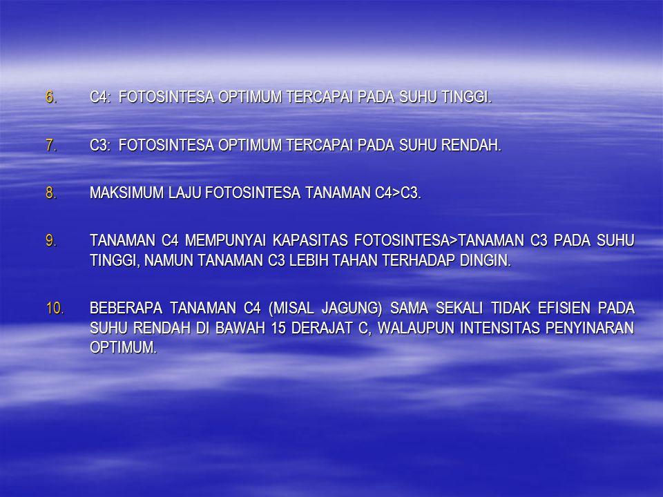 PRODUKTIVITAS TANAMAN 1.PRODUKTIVITAS TANAMAN: JUMLAH PERTUMBUHAN YANG DAPAT DICAPAI OLEH SUATU TANAMAN PADA SUATU PERIODE WAKTU TERTENTU, MERUPAKAN FUNGSI LAJU FOTOSINTESIS BERSIH.