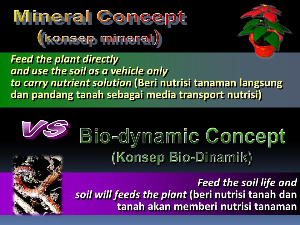 Min era l con cep t vs Bio dyn ami c Feed the plant directly and use the soil as a vehicle only to carry nutrient solution (Beri nutrisi tanaman langsung dan pandang tanah sebagai media transport nutrisi) Feed the plant directly and use the soil as a vehicle only to carry nutrient solution (Beri nutrisi tanaman langsung dan pandang tanah sebagai media transport nutrisi) Feed the soil life and soil will feeds the plant (beri nutrisi tanah dan tanah akan memberi nutrisi tanaman Feed the soil life and soil will feeds the plant (beri nutrisi tanah dan tanah akan memberi nutrisi tanaman