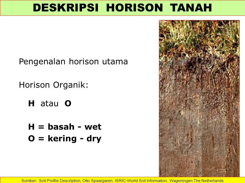 Pengenalan horison utama Horison Organik: H atau O H = basah - wet O = kering - dry Sumber: Soil Profile Description.