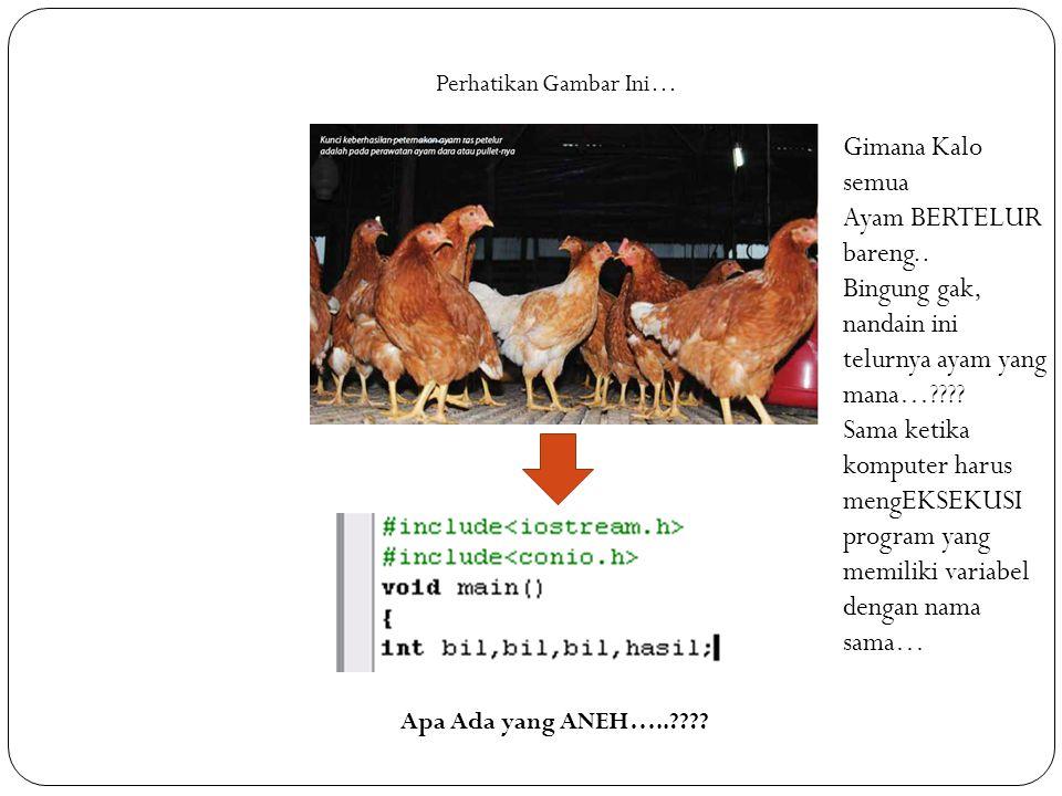 Perhatikan Gambar Ini… Apa Ada yang ANEH…..???? Gimana Kalo semua Ayam BERTELUR bareng.. Bingung gak, nandain ini telurnya ayam yang mana…???? Sama ke