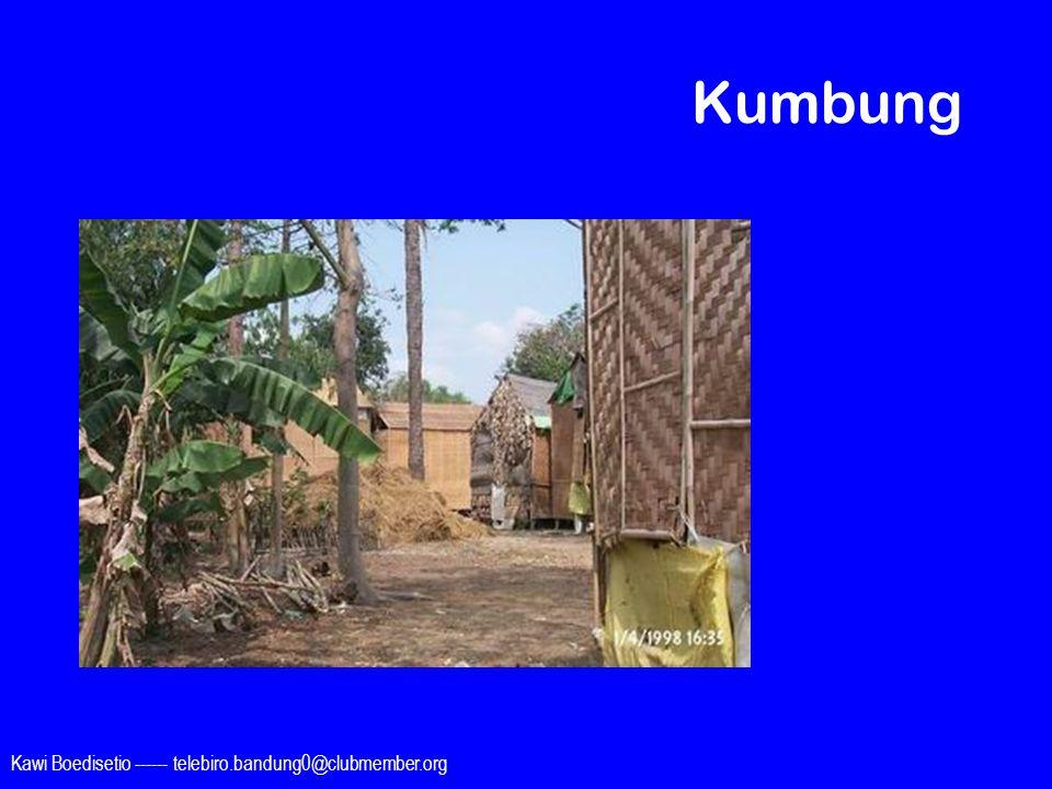 Kawi Boedisetio ------ telebiro.bandung0@clubmember.org Kumbung