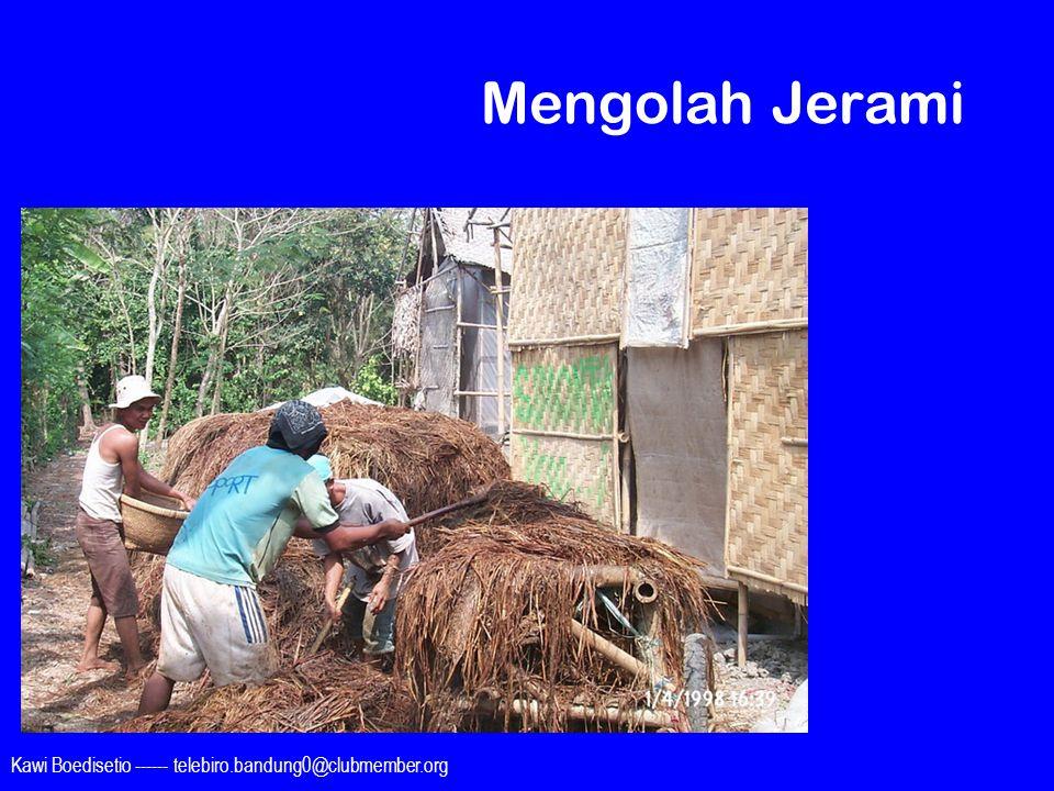 Kawi Boedisetio ------ telebiro.bandung0@clubmember.org Mengolah Jerami