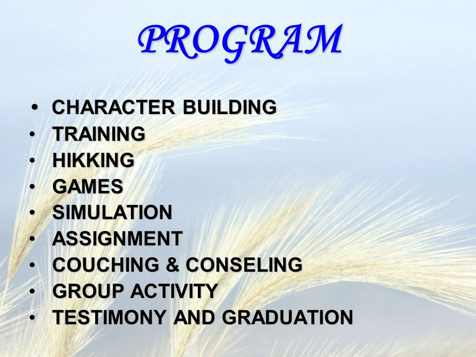PROGRAM CHARACTER BUILDING CHARACTER BUILDING TRAINING TRAINING HIKKING HIKKING GAMES GAMES SIMULATION SIMULATION ASSIGNMENT ASSIGNMENT COUCHING & CONSELING COUCHING & CONSELING GROUP ACTIVITY GROUP ACTIVITY TESTIMONY AND GRADUATION TESTIMONY AND GRADUATION