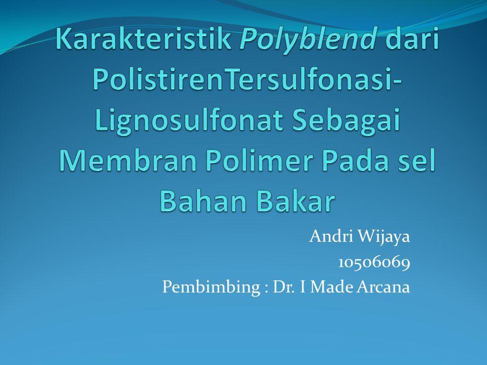 Andri Wijaya 10506069 Pembimbing : Dr. I Made Arcana