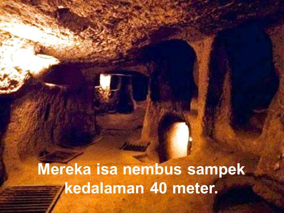 Para ahli kedhug2 barang antik (Arkeolog) mulai tertarik mempelajari konstruksi kuno iki