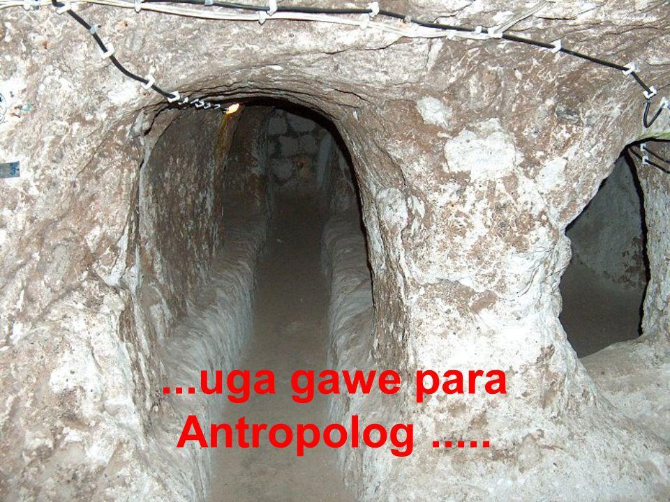 Lha sing liyane diblokir utawa disediakna gawe para Arkeolog…