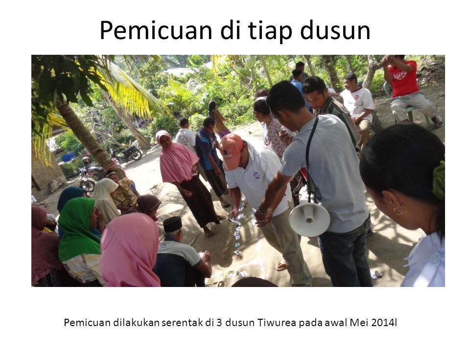 Pemicuan di tiap dusun Pemicuan dilakukan serentak di 3 dusun Tiwurea pada awal Mei 2014l