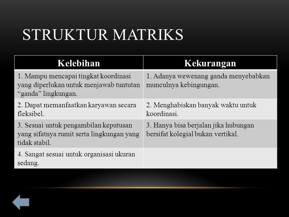 STRUKTUR MATRIKS KelebihanKekurangan 1.