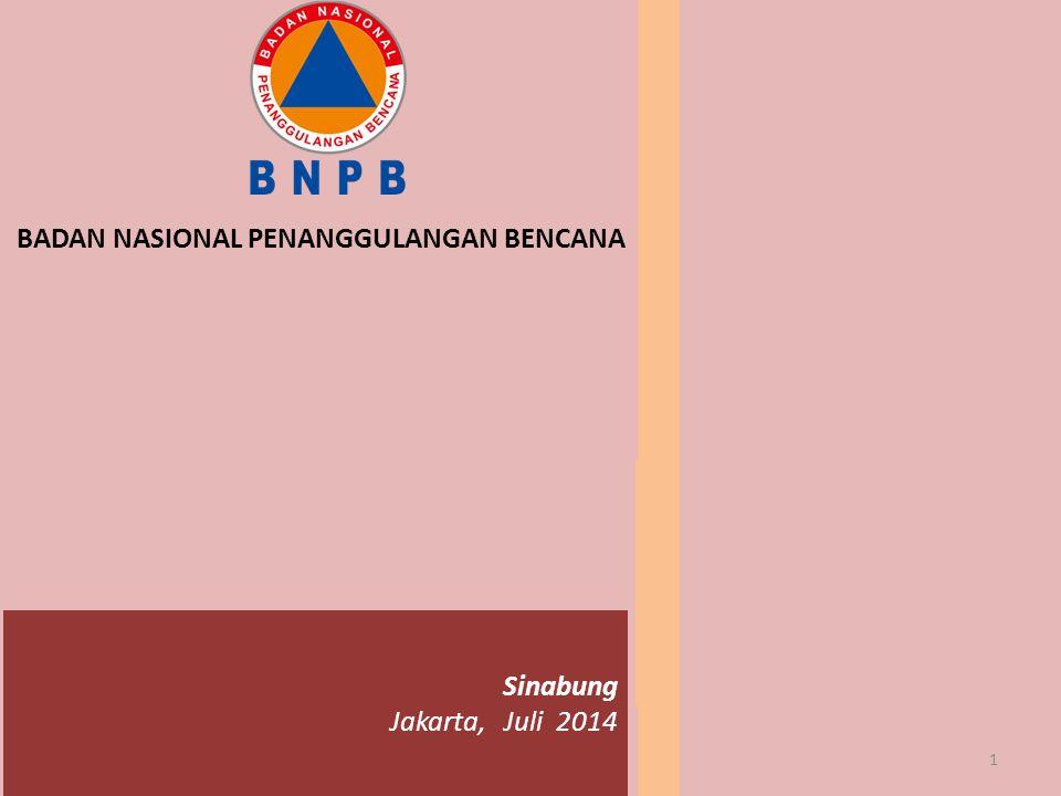 BADAN NASIONAL PENANGGULANGAN BENCANA 1 Sinabung Jakarta, Juli 2014