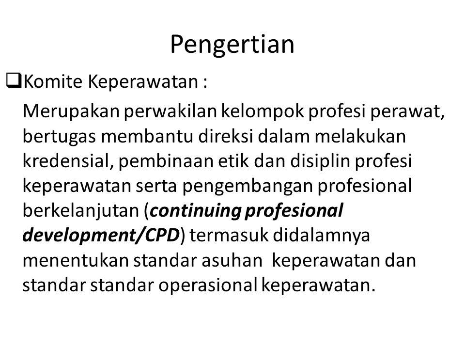 Pengertian  Komite Keperawatan : Merupakan perwakilan kelompok profesi perawat, bertugas membantu direksi dalam melakukan kredensial, pembinaan etik