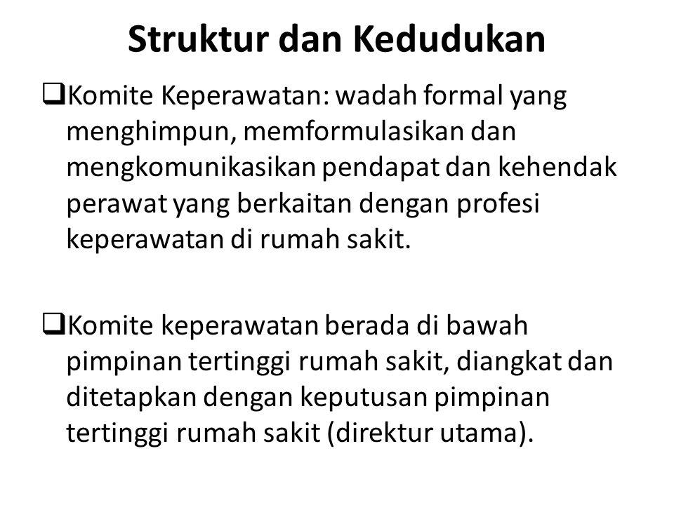 Struktur dan Kedudukan  Komite Keperawatan: wadah formal yang menghimpun, memformulasikan dan mengkomunikasikan pendapat dan kehendak perawat yang be