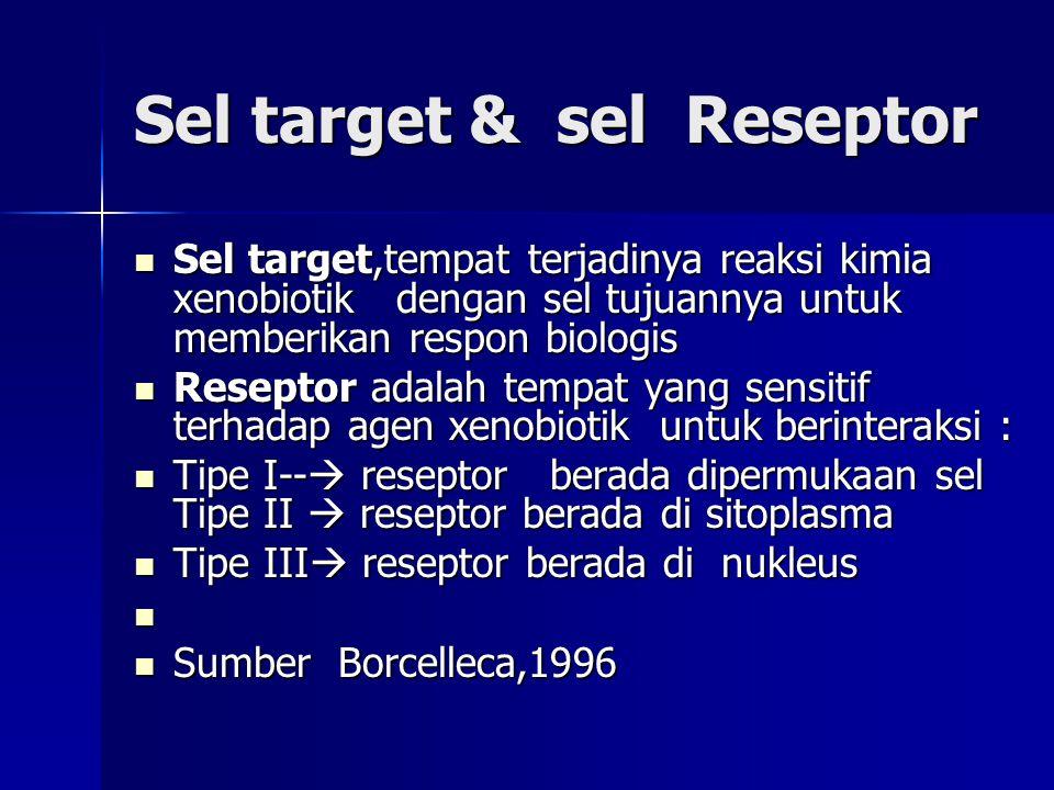 Sel target & sel Reseptor Sel target,tempat terjadinya reaksi kimia xenobiotik dengan sel tujuannya untuk memberikan respon biologis Sel target,tempat terjadinya reaksi kimia xenobiotik dengan sel tujuannya untuk memberikan respon biologis Reseptor adalah tempat yang sensitif terhadap agen xenobiotik untuk berinteraksi : Reseptor adalah tempat yang sensitif terhadap agen xenobiotik untuk berinteraksi : Tipe I--  reseptor berada dipermukaan sel Tipe II  reseptor berada di sitoplasma Tipe I--  reseptor berada dipermukaan sel Tipe II  reseptor berada di sitoplasma Tipe III  reseptor berada di nukleus Tipe III  reseptor berada di nukleus Sumber Borcelleca,1996 Sumber Borcelleca,1996