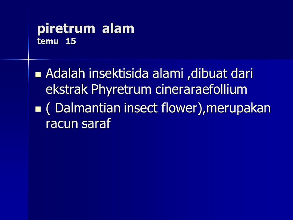 piretrum alam temu 15 Adalah insektisida alami,dibuat dari ekstrak Phyretrum cineraraefollium Adalah insektisida alami,dibuat dari ekstrak Phyretrum cineraraefollium ( Dalmantian insect flower),merupakan racun saraf ( Dalmantian insect flower),merupakan racun saraf