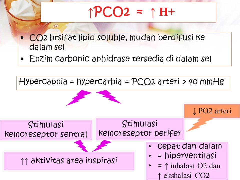 kemoreseptor 1.Central chemoreseptor Sensitif thd perubahan kadar H+ dan atau PCO2 dalam LCS 2.Perifer chemoreseptor Sensitif thd perubahan kadar PO2,