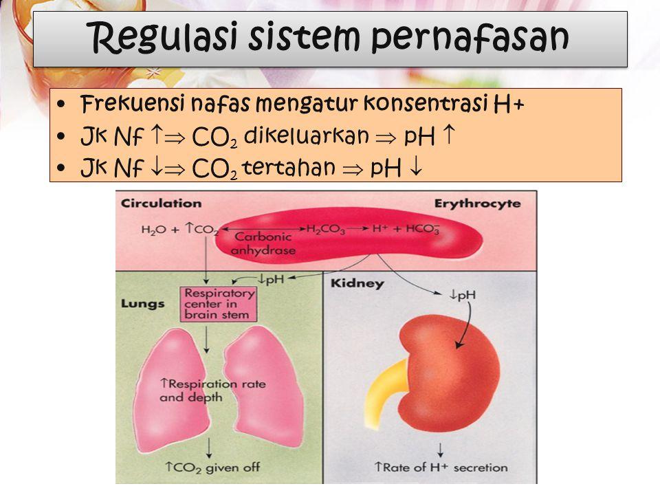 Ingat !!! Transpor Co2 1. Dissolved =10% 2. HbCo2 = 30% 3. HCO 3 - = 60% Ca= carbonic anhidrase Cloride Shift