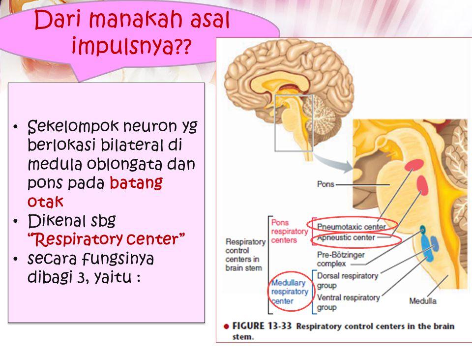 Pendahuluan Bernafas Pengembangan – Pengempisan paru Pengembangan – Pengempisan rongga torak Kontraksi otot pernafasan relaksasi otot pernafasan Ketik