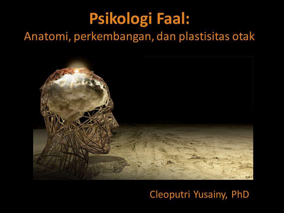 Psikologi Faal: Anatomi, perkembangan, dan plastisitas otak Cleoputri Yusainy, PhD