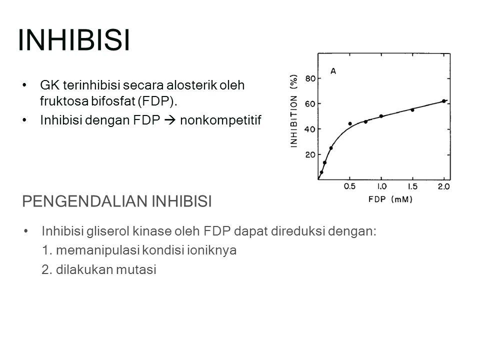 INHIBISI GK terinhibisi secara alosterik oleh fruktosa bifosfat (FDP).
