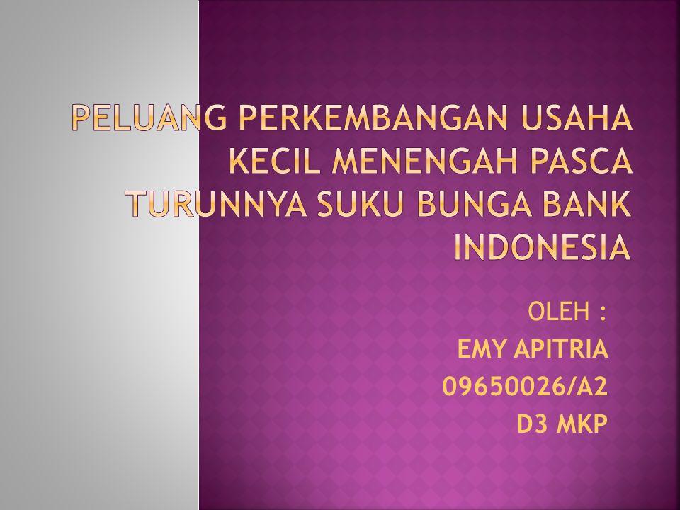 OLEH : EMY APITRIA 09650026/A2 D3 MKP