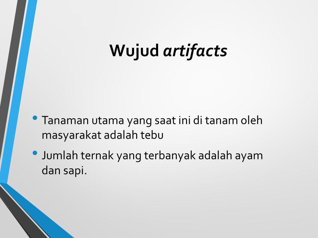 Wujud artifacts Tanaman utama yang saat ini di tanam oleh masyarakat adalah tebu Jumlah ternak yang terbanyak adalah ayam dan sapi.